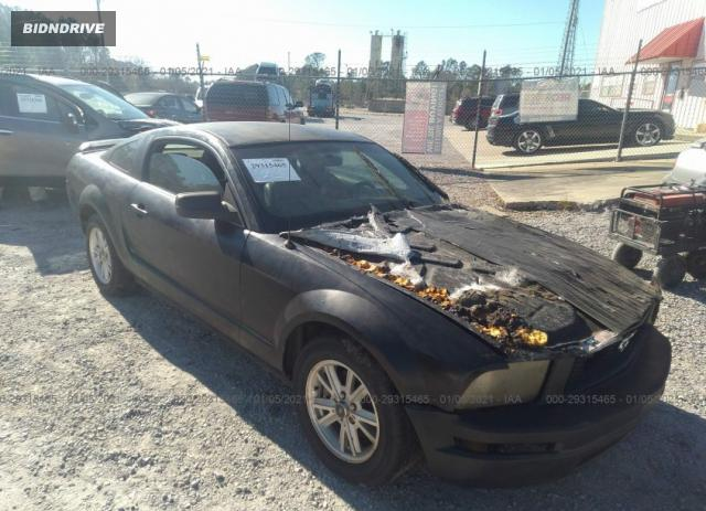 Lot #1641494816 2006 FORD MUSTANG STANDARD/DELUXE/PREMIUM salvage car