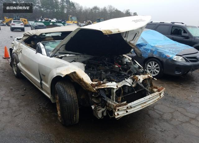 Lot #1693565573 2005 FORD MUSTANG GT salvage car
