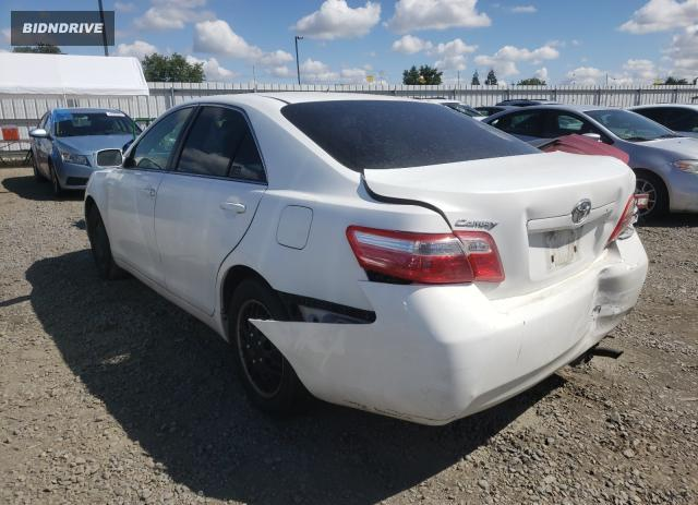 Lot #1710017236 2009 TOYOTA CAMRY BASE salvage car